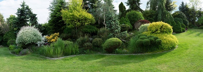 Gartenbepflanzung Von Ing Gerold Reischl Gartengestaltung Gmbh In Wien